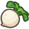 :turnip: